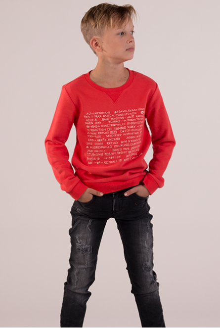 Sweater Boyan Rood