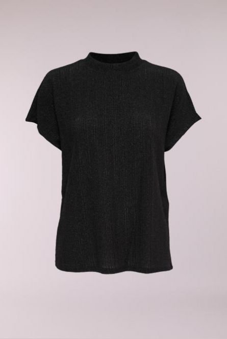 Glitter shirt met turtle neck Black/LUREX