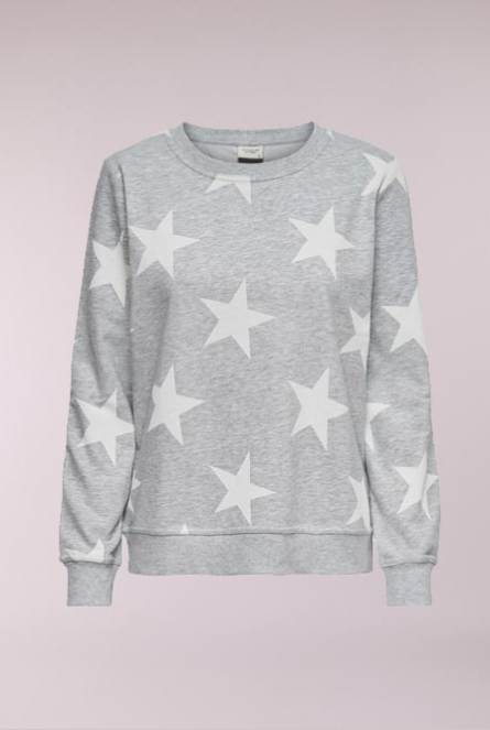 Sweater Apollo met print Light Grey Melange/CLOUD DANCER STA