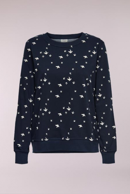 Sweater Apollo met print Sky Captain/CLOUD DANCER SWALLOW