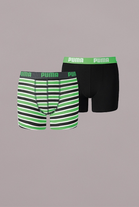 BASIC BOXER PRINTED STRIPE 2P 704-classic green