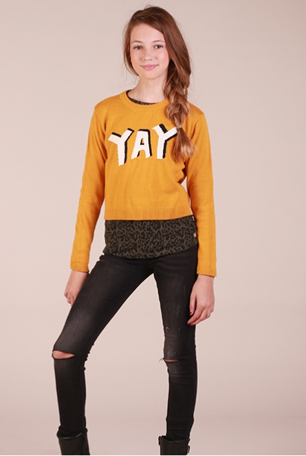 Sweater Evrin Geel