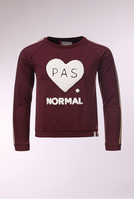 Sweater Bordeaux rood