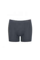EverNew Short Grijs