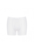 EverNew Short Wit